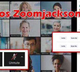 Videos Zoomjacksonvice 2021