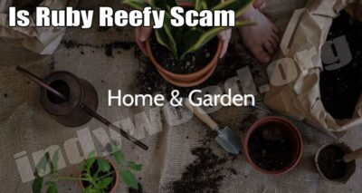 Is Ruby Reefy Scam (July) Read Post Before Shopping Here