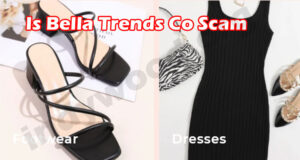 Bella Trends Co Online Reviews
