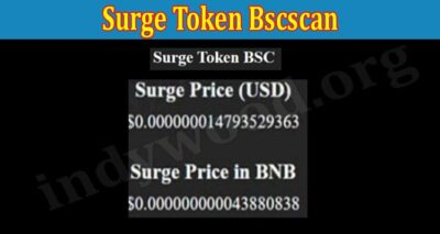 Surge Token Bscscan (Aug) Let Us Check The Exact Values!