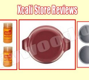 Xcali Store Reviews (Aug) Is This Site Legit Or Scam