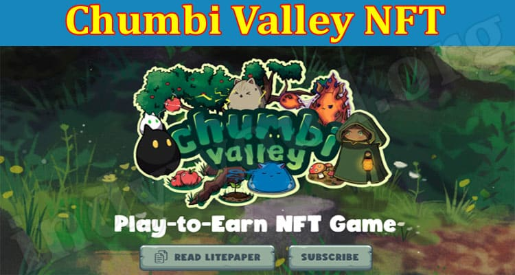 About General Information Chumbi Valley NFT